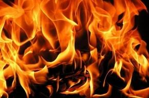 Диван с постельным бельем обгорел на шоссе Революции