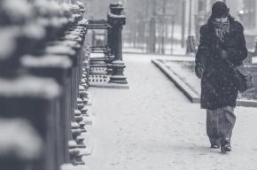 Морозы пришли в Петербург
