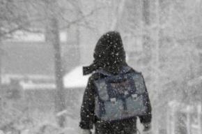 Школьника в Новосибирске дважды высадили из автобуса в 30-градусный мороз