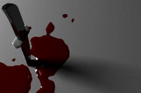 Петербуржец 54 ударами ножа убил двух собутыльников