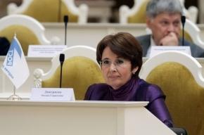 Дмитриева направила Полтавченко запрос о «критической ситуации» с уборкой снега