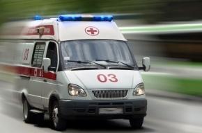 Труп молодого петербуржца нашли в НИИ экспериментальной медицины
