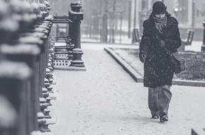 Снегопад и гололедица ожидают Петербург