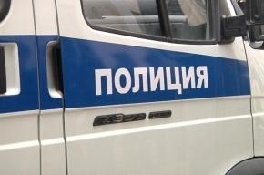 «Медработницы» оставили пенсионерку в Петербурге без 90 тысяч рублей