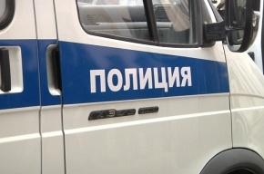 Полиция Петербурга поднята по тревоге из-за нападения на ребенка