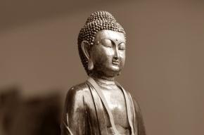 Руководство бара в Новокузнецке «оскорбило» статую Будды