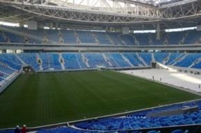 Мутко прокомментировал претензию ФИФА из-за поля на Крестовском