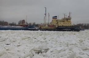 Ледокол спасает застрявший во льдах Невы лесовоз