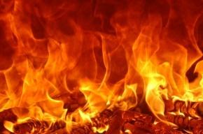 «Лада» сгорела в гараже во Фрунзенском районе