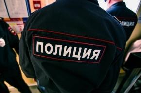 Антикварные украшения украли из квартиры на Каменноостровском