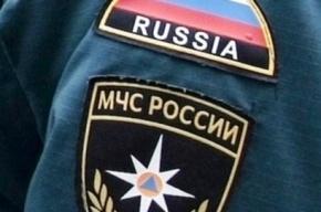Внедорожники директора стройкомпании и его жены сожгли в Петербурге
