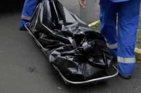 Труп пенсионерки нашли на автобусной остановке в Купчино