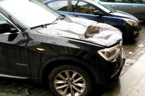Льдина пробила капот BMW на платной парковке на Кирочной
