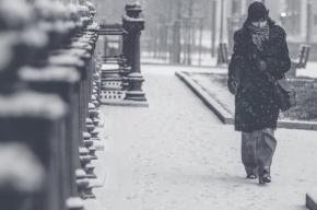 Снегопад 2.0: Петербург ждет белый апокалипсис