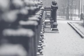 Петербург ждет снежный шторм