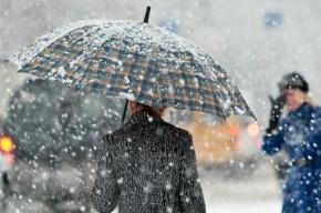 Гидрометцентр предупреждает о снеге и гололедице в Петербурге