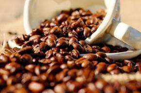 Ученые выяснили, какую пользу приносят кофе-брейки на работе
