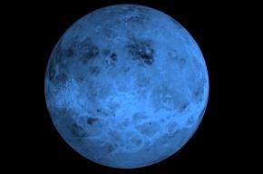 Ученые на Венере нашли несколько инопланетных колоний