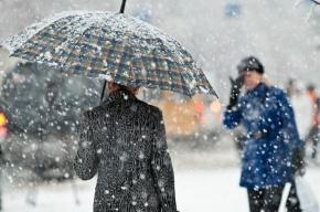 Петербург ждет снегопад, гололедица и снежный накат