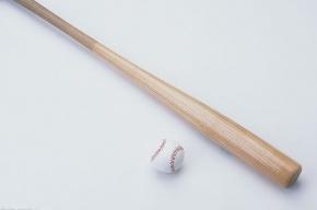 Петербурженка избила спящего мужа бейсбольной битой