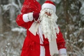 Роскомнадзор выявил 55 сайтов с данными детей, писавших письма Деду Морозу