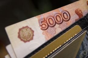 Преследуемая коллекторами девушка пропала в Петербурге