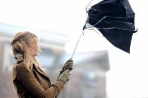Дожди и сильный ветер ожидаются в Петербурге