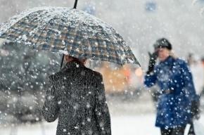 Петербург ждет 26 ноября сильный снег с дождем