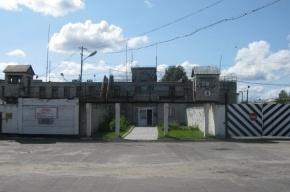 ГИБДД и ФСИН оцепили поселок, в котором отбывает наказание Дадин
