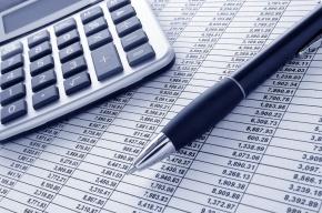 «Яблоко» предложило перенаправить деньги от ЗСД и «Невской ратуши» на социальные нужды