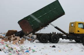 Около трех тонн санкционки уничтожено бульдозером в Ленобласти