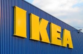 Шведская компания построит в Петербурге огромную Мегу