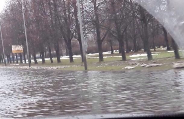 Дорогу на проспекте Маршала Блюхера затопило талыми водами