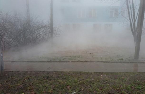 Пар от прорыва трубы с горячей водой заполонил улицу в Колпино