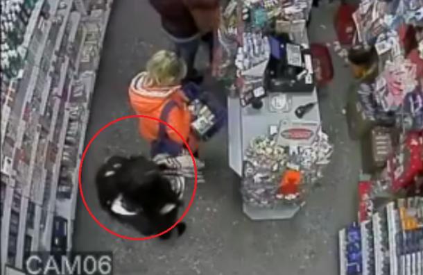 Жители Петербурга предупредили о карманнице в Калининском районе