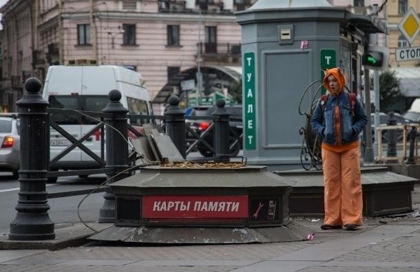 Петербуржцев попросили определить будущее Сенной площади