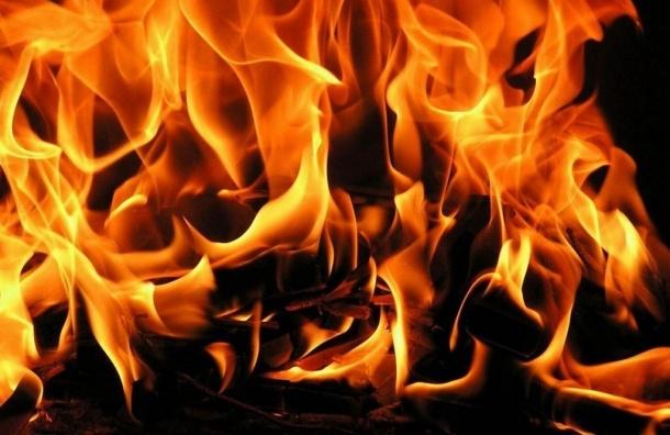 Две иностранные машины сгорели в Кировском районе за ночь