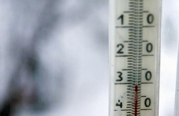 Ярославский кондуктор высадил на мороз двух детей из-за сломанного проездного