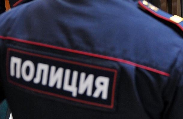 Резник требует проверить полицейских за задержание корреспондента «Коммерсанта»