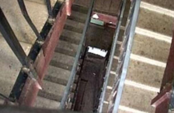 Вцентре Петербурга свысоты упал иразбился ученик изКитая