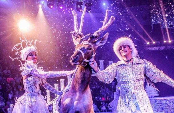 C17 декабряна манеже Цирка Чинизелли – премьера цирковой программы