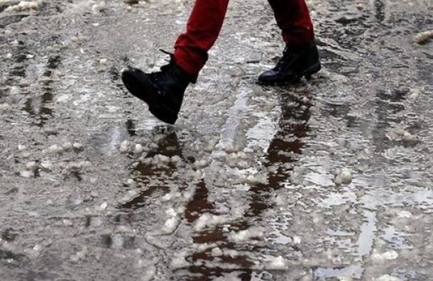 МЧС: сильный ветер ждет Петербург к полудню