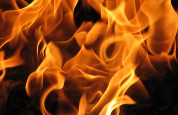 Впожаре наулице Есенина погибли два человека
