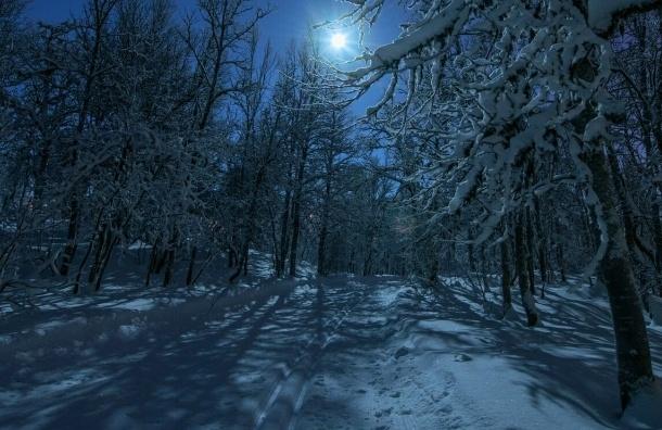 Северо-запад России ждет самая теплая новогодняя ночь