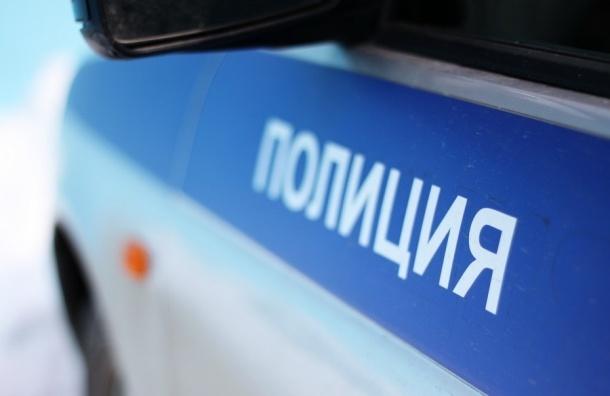 Приезжий из Донецка ударил полицейского в Москве ногой в лицо
