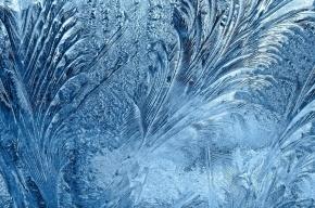 Заморозки до -10 ожидаются в Петербурге