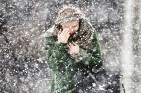 Снег и гололедица ожидаются в Петербурге