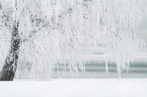 Гидрометцентр: в Петербурге ожидается снег, на дорогах гололедица