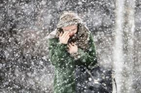 Неделя в Петербурге начнется с оттепели и снегопада