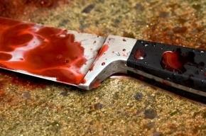 СМИ: Скинхеды раздели и зарезали в Москве молодую девушку